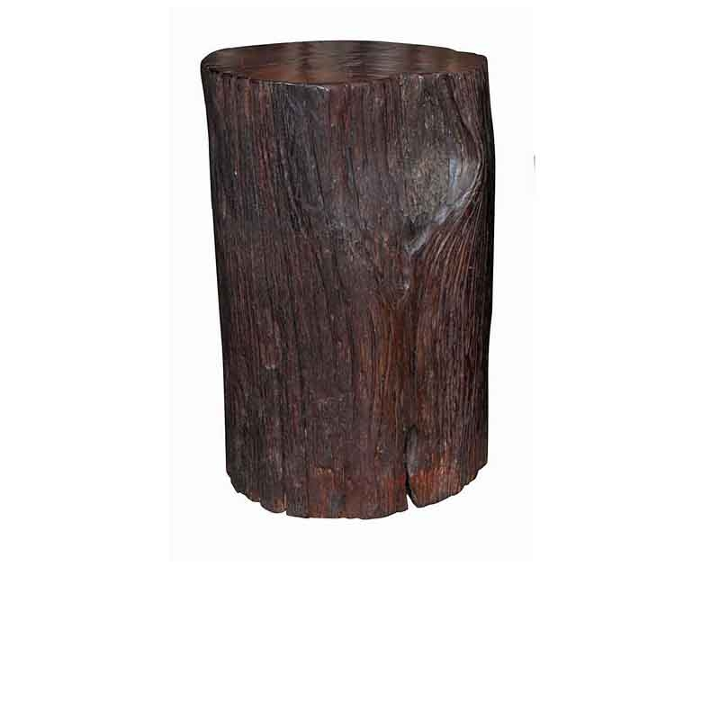 Tree Trunk End Table / Stool
